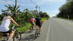 Fahrradtouren Phuket - Krabi
