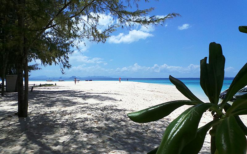 Phi Phi Island Paradise