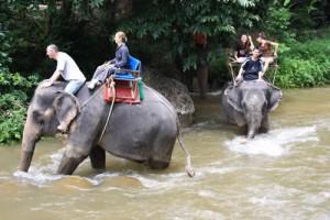 Phuket Wildwasser Rafting mit Elefantenreiten