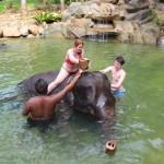 Bagno degli elefanti con Kapong Safari Tours