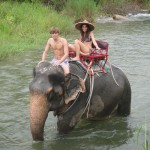 Elephant Trekking in Phang Nga