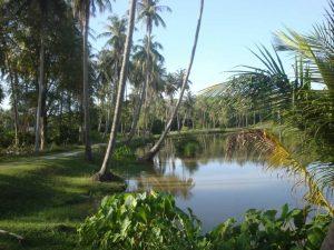 Phuket Phuket Inselhüpfen
