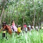 Kids on Horse Backs