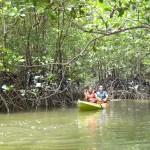 Krabi Tours Kayaking