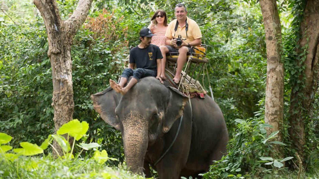 Elephant Trekking Phuket - Jungle Ride