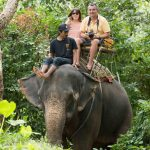 Elephant Trekking Phuket - Jungle Ride