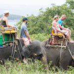 Elephant Trekking Phuket - Mountain Top