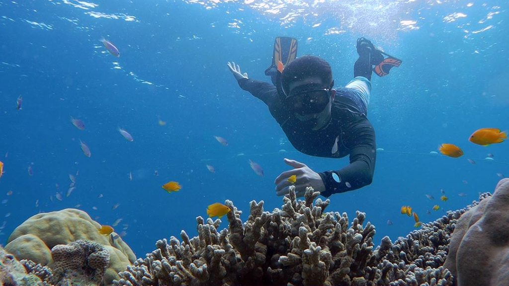 Private Phuket Snorkeling Tour