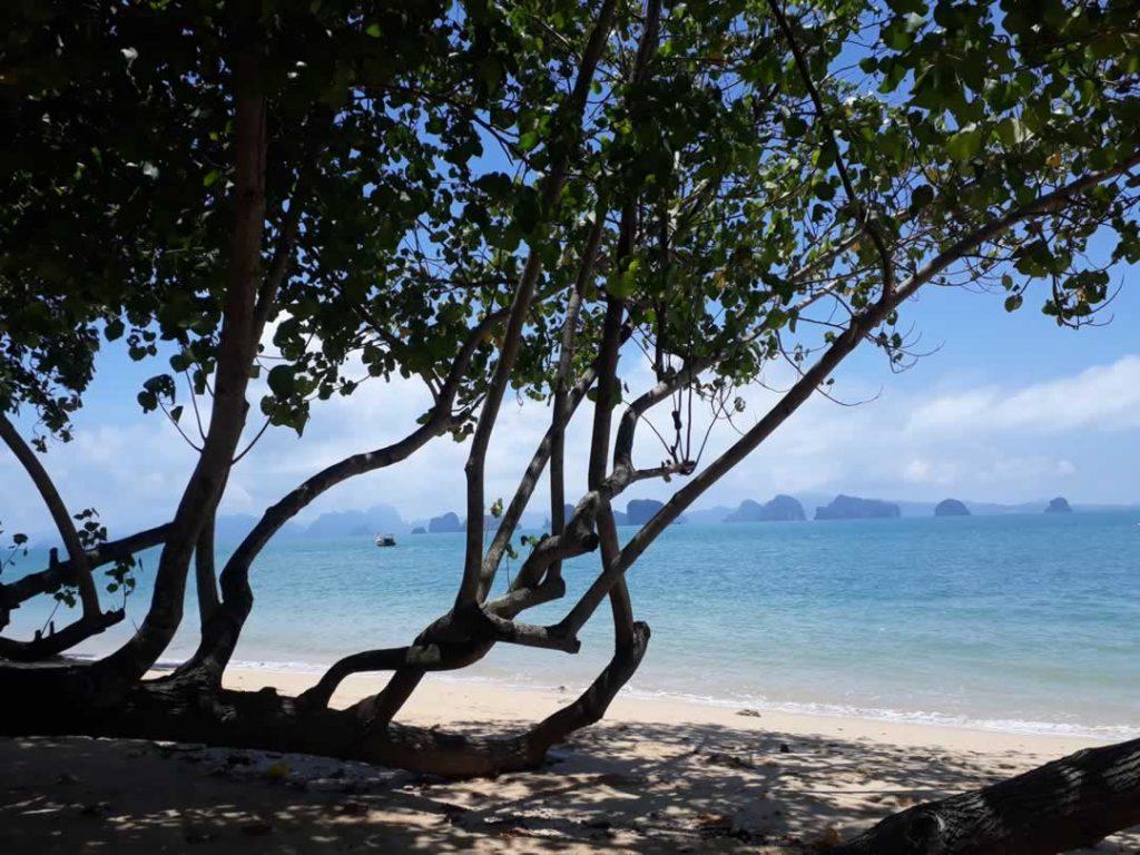 Aussicht auf Phang Nga Bay