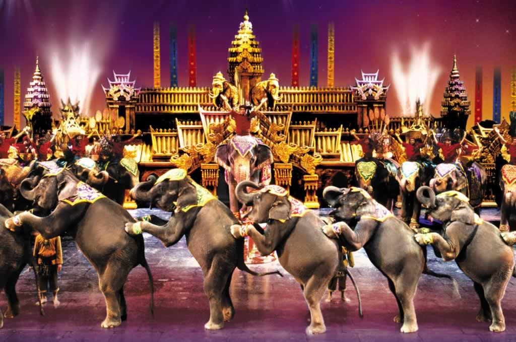 Elephant Show